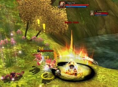 Ragnarok Online 2 Combat